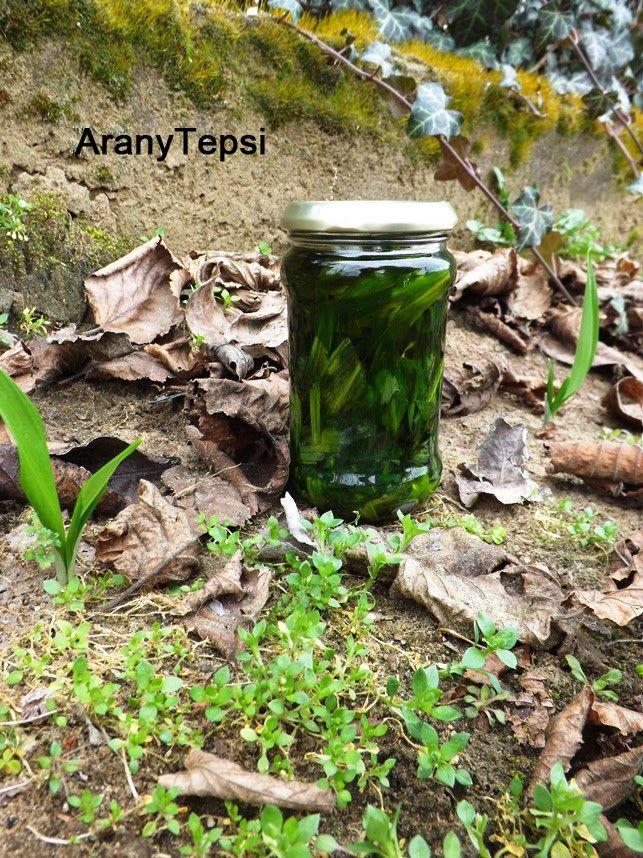 AranyTepsi: Medvehagyma olívaolajban eltéve