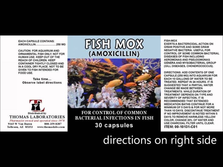 Fish Antibiotics in a Collapse by Dr Bones. Learn about fish antibiotic alternatives to Rx antibiotics.