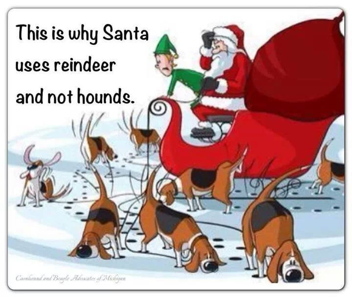 After Santa tried various hound breeds for lo- tech navigation, he ultimately has to scrap the entire category...