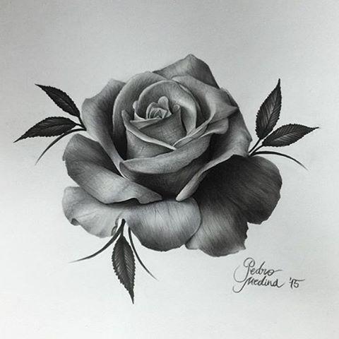 "901 Likes, 16 Comments - ⠀⠀⠀⠀⠀⠀R O S E  T A T T O O S (@rosetattoos_) on Instagram: ""Incredible Realism Rose Art by @pedromedinaart <<<  #rosetattoo #rose #tattoo #art #drawing…"""