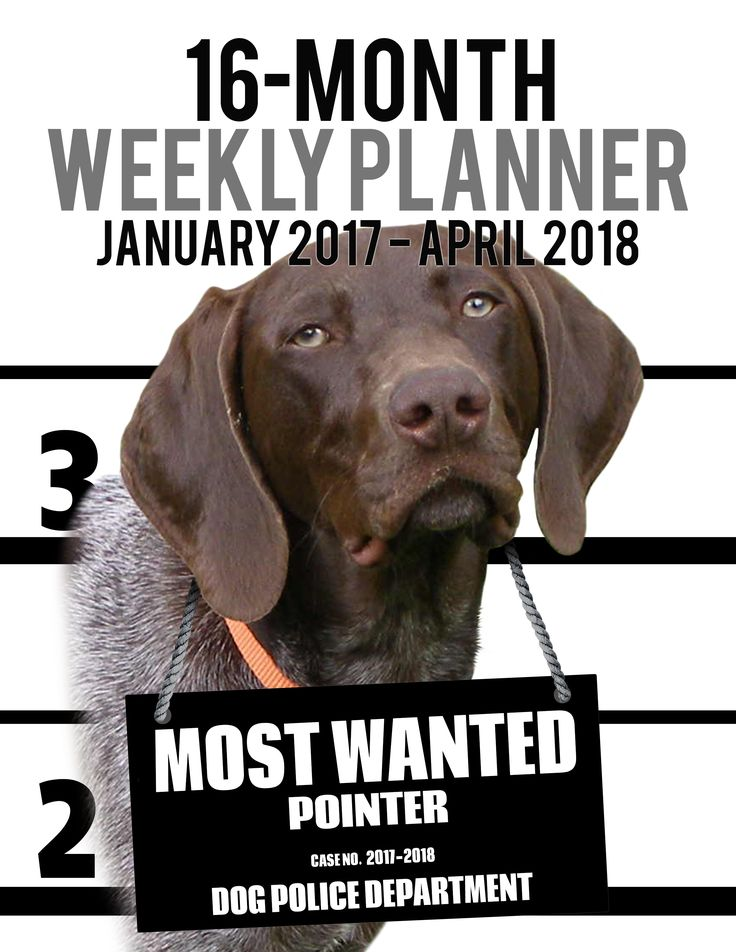 2017-2018 Weekly Planner - Most Wanted Pointer: Daily Diary Monthly Yearly Calendar (Dog Planners) 2017-2018 Weekly Planner for Dog lovers - Pointer lovers in particular!       Adorable Most Wanted Pointer image graces the cover of this cute engagement calendar.       Popular easy to use planner format shows a week-at-a-view to help keep you organized 7 days at a time. This Calendar/planner covers 16 months (January 2017 -- April 2018).
