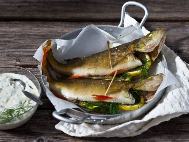Fried European perch with Nordic kind of sour cream sauce