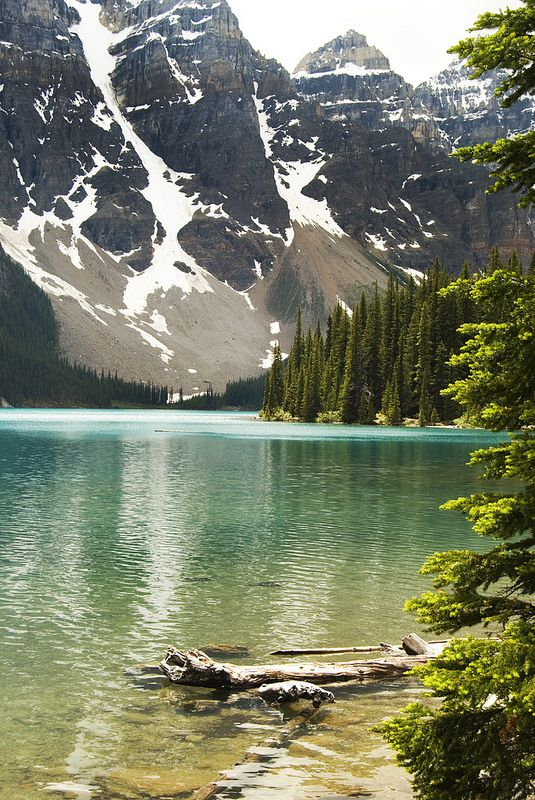 Morraine Lake Canadian Rockies #travel #CR