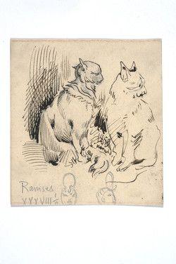 Norwid, Cyprian Kamil (1821-1883): [Koty]