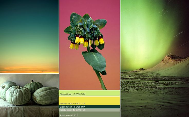 S/S 2013 Colour Trends - Green
