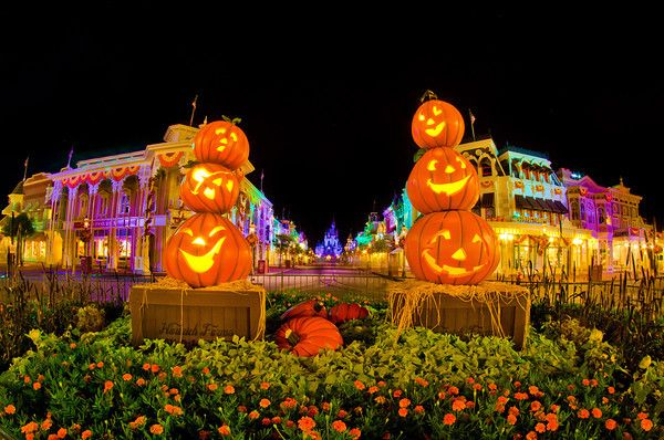 Many people view October as the best month of the year to visit Walt Disney World due to temperate weather, low crowds, and its seasonal events. If you ask