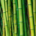 Bamboo Boat Wind Chimes | World Market