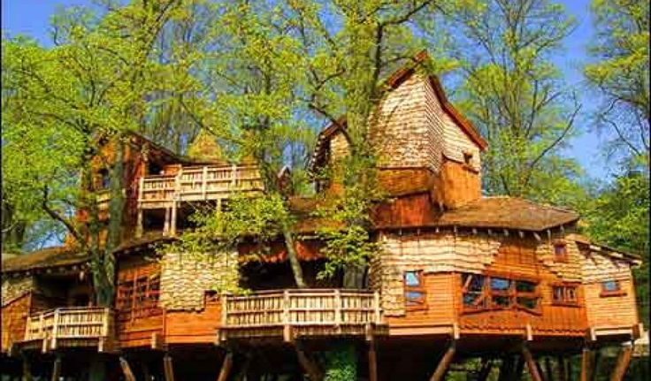 Awesome amazing tree houses For Windows 7 Wallpaper with amazing ...