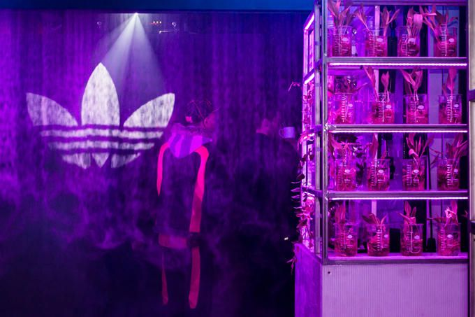 Image result for adidas future house london
