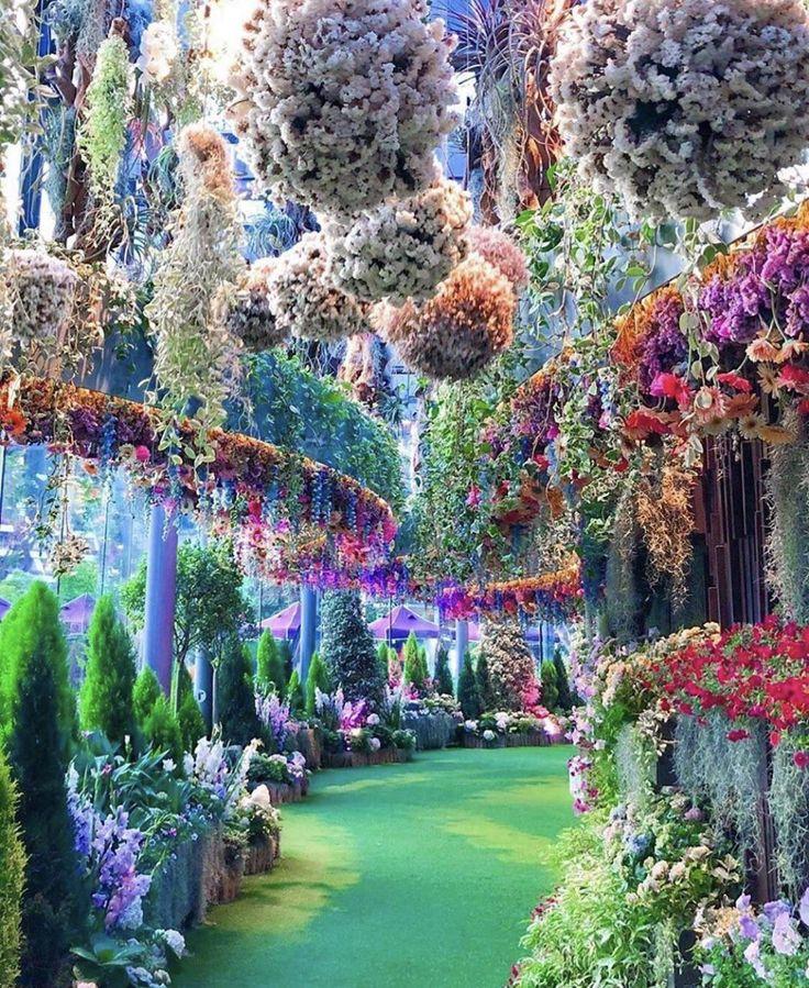 Breathtaking gardens located in Singapore gardening