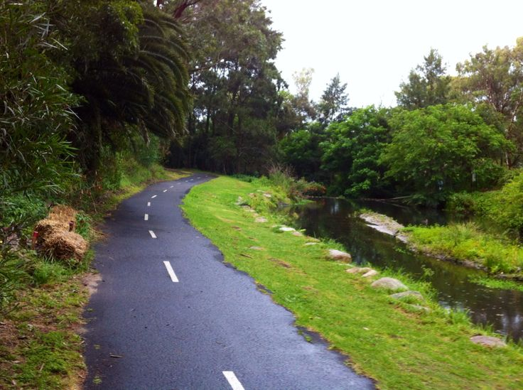 Another view of the Seaforth bike path. #cycling #ride #bike #explore #sydney