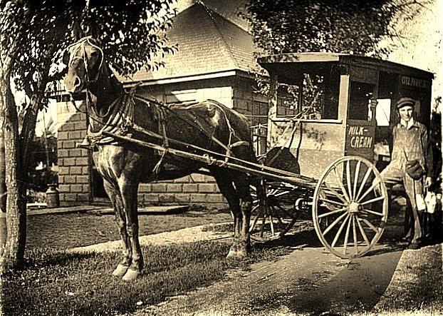 old pictures of milk wagons | SPEEDCAT HOLLYDALE PAGE: Milkeddie Milker Truck
