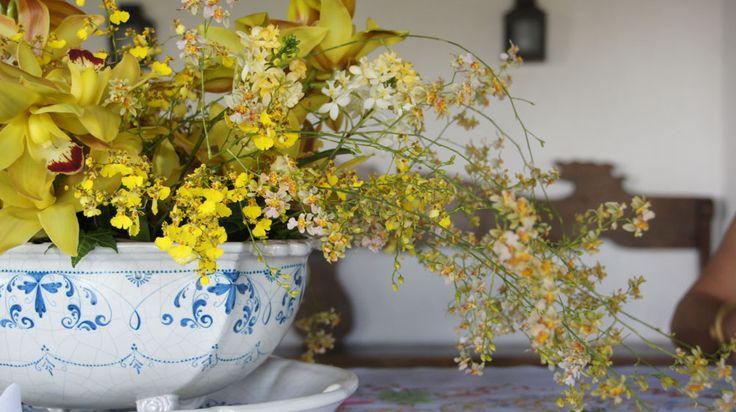 Flores amarelas para dar um charme na decoração.: Flores Amarelas, Flore Amarela