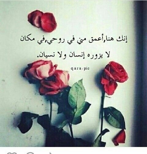 Pin By Asila Alhabsi On توزيعات Love Words Arabic Love Quotes Arabic Quotes
