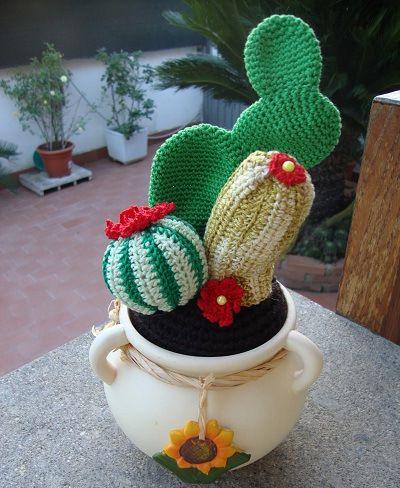 8 best images about Amigurumi piante grasse on Pinterest ...