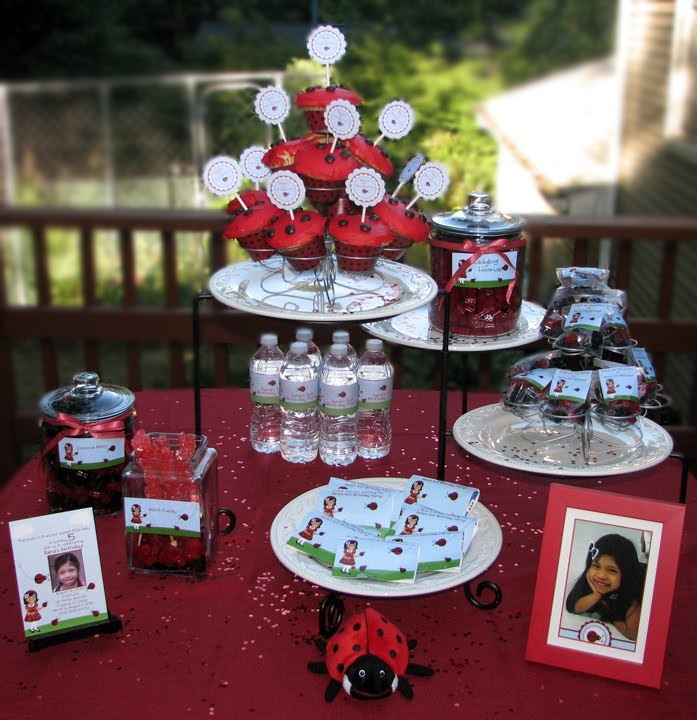 25 best Ladybug Birthday Party images on Pinterest Birthday party