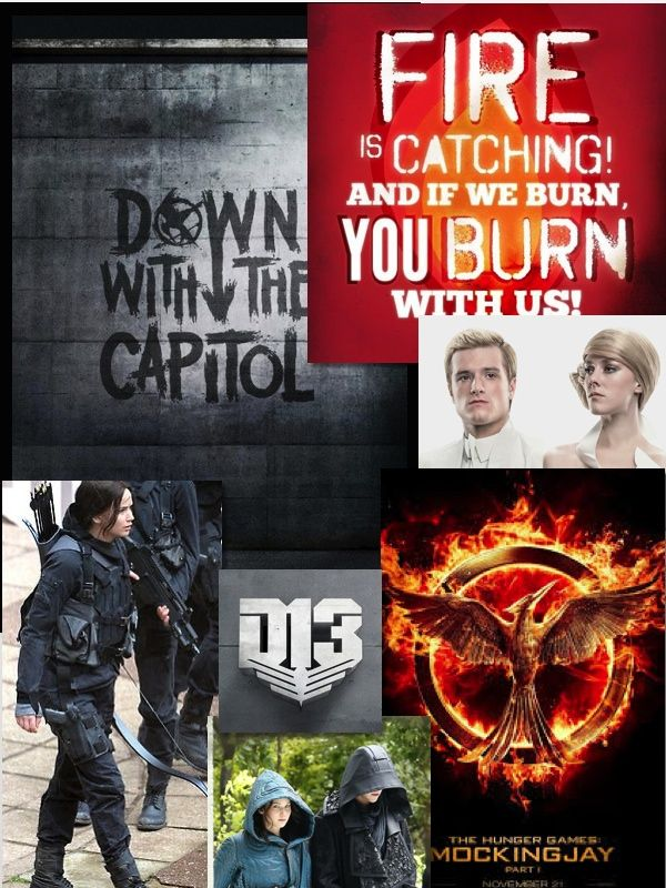 Mockingjay collage made by Abby E. Clark with more to come ...