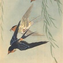 ixxi image bank rijksmuseum art three birds in flight ohara koson
