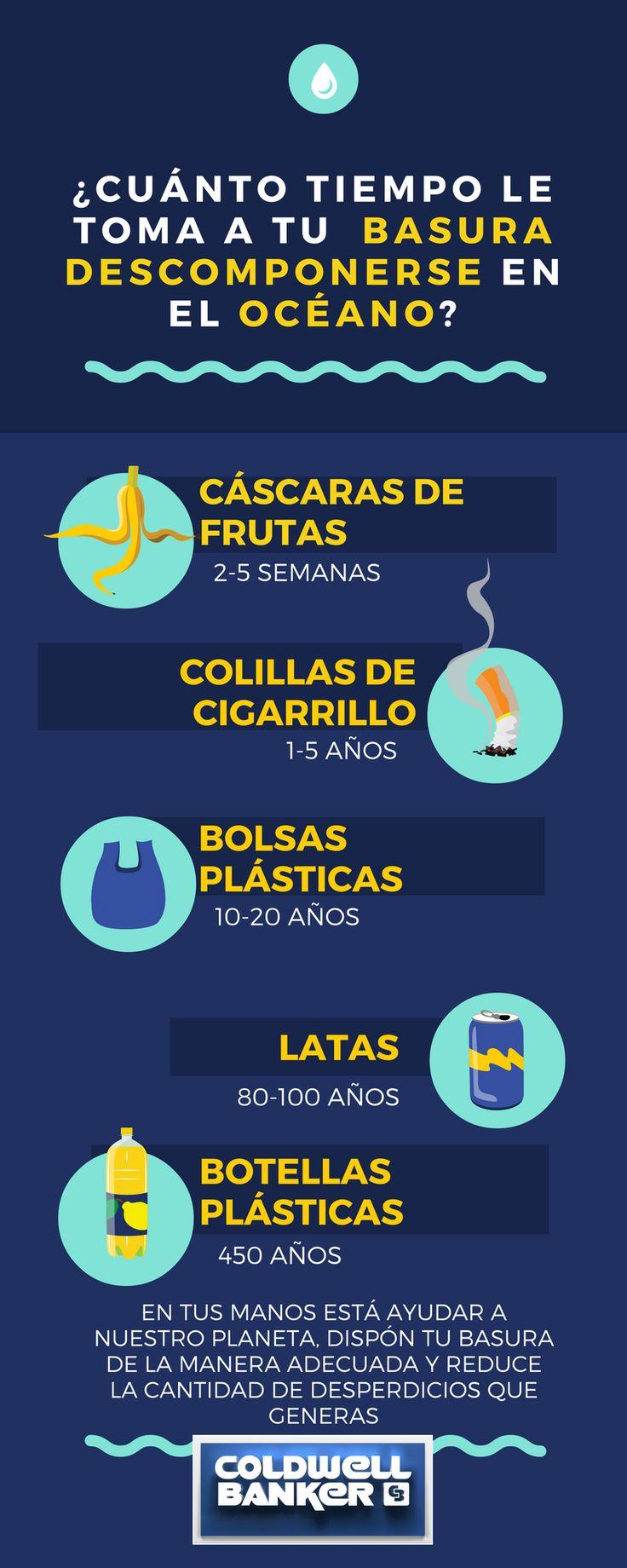 ¿Somos consientes del daño que le hacemos a los océanos? Aquí te damos algunos datos importantes. #lainmobiliariaazul #cbcolombia