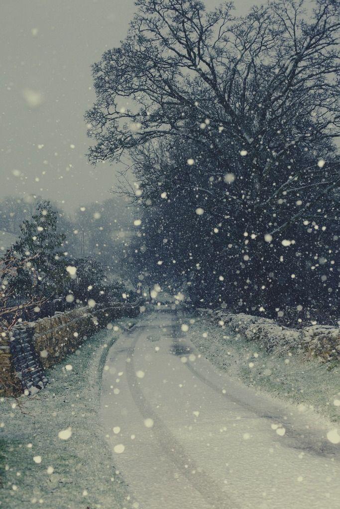 Beautiful snowy lane.