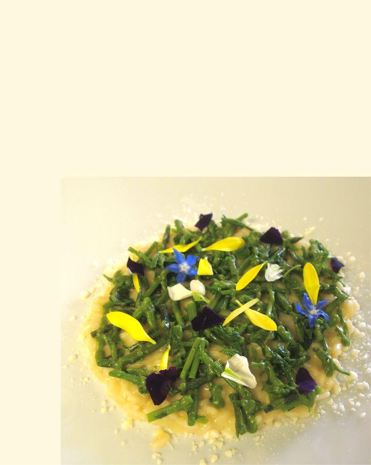 Risotto con germogli primaverili, crema di strigoli e fiori di campo