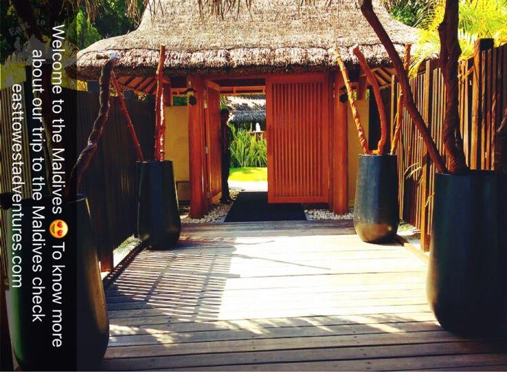 Welcome to the Maldives 😍 اهلًا وسهلا بكم في المالديف    #easttowestadventures #maldives #travelblogger #travelphotography  #adaraanprestige  #honeymoon #5starmeal #watervilla #privatepool #indianocean #whitesand #palmtrees #privateisland #onceinalifetime #stepstothesea