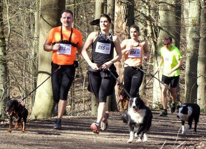 Courez avec un chien lors de la première Cani-Course contre l'abandon de France, demain, le 30 juin. Cette Cani-course sera le premier événement sportif de collecte de fonds avec et pour les animaux en France. Le parcours sera une boucle de 6.4 km dans le Bois de Vincennes, près de Paris. Chaque participant devra le marcher ou le courir avec son chien, ou un chien d'un refuge SPA s'il ne possède pas son propre compagnon à 4 pattes.