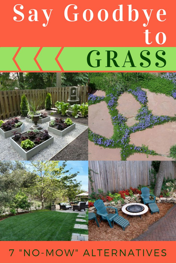goodbye grass 7 inspiring ideas for a no mow backyard - Garden Ideas To Replace Grass