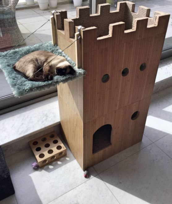 """We believe many of you will want one of these!  This is the princess in her new fortress.      """"When we just got her as a kitten I made her a castle out of cardboard, so that's where"""