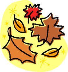 Entspannt durch den Herbst...