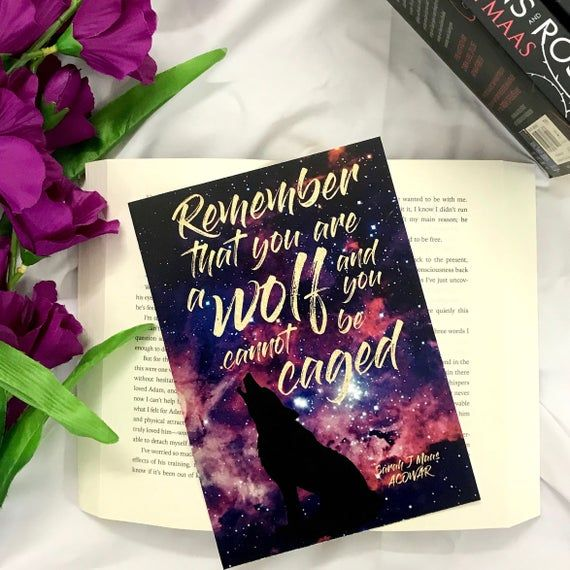 A Court Of Thorns And Roses Postcard Acotar Postcard Acowar