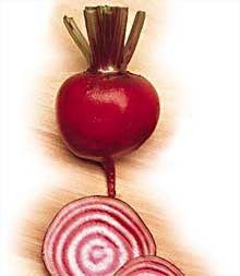 Chioggia Beet Seeds - 3.5 grams