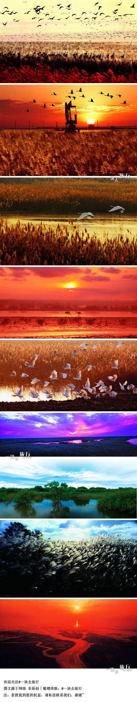 黃河口的朝暉與夕陽                              Yellow River, China(Huang He Kou) #travel