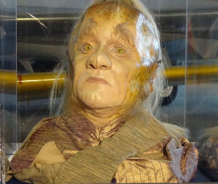 A Talaxian prop from the Star Trek: The Starfleet Academy Experience at the Aviation Museum, summer 2016. Neelix: I've been resting for two days straight and resting makes me feel...well, restless!