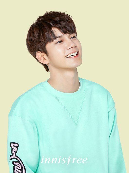 Ong Seongwoo • Wanna One