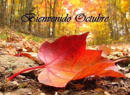 31 Días Internacionales que se celebran en octubre