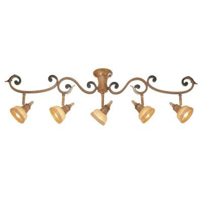 track lighting styles transitional. Eurofase Anenta Collection 5-Light Antique Gold Track-16891-029 At The Home Track Lighting Styles Transitional L