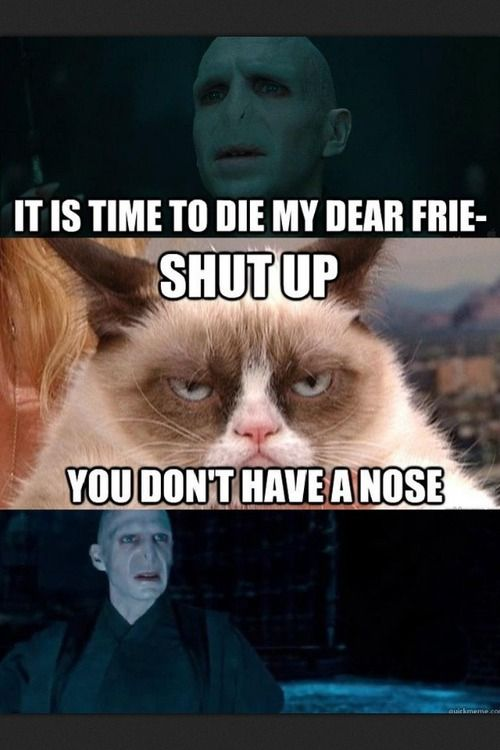 Grumpy Cat. Harry Potter. This cracked me up no idea why... Shut up you don't have a nose.