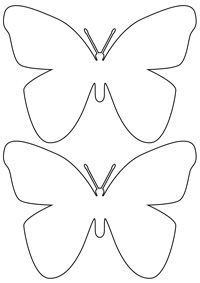 butterfly camouflage activity -- science