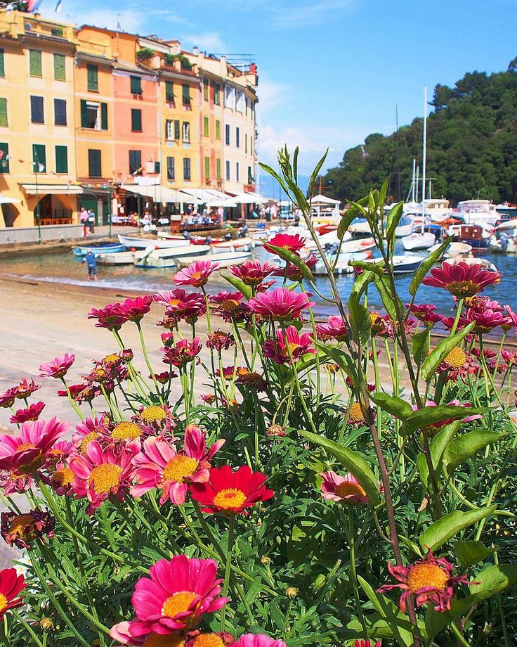 Have a great weekend everyone!  #italy #sognoitaliano #Liguria #volgoliguria #ig_liguria #igersliguria #italia