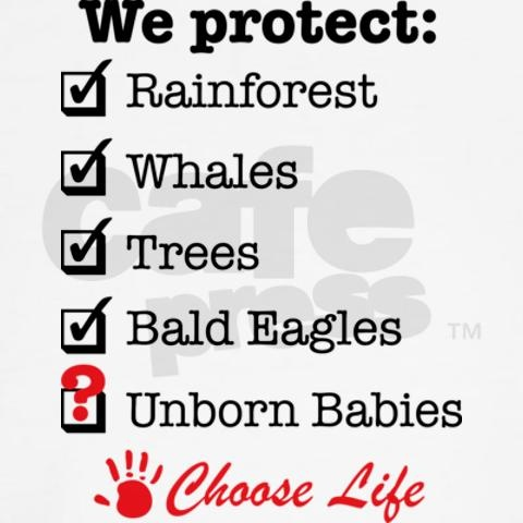 Why do liberals feel that everything except human babies who are just as vulnerable as any other going-extinct species aren't worth protecting?