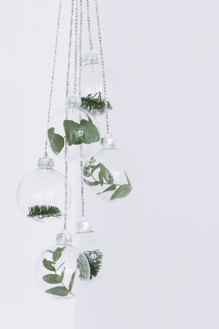 Simple, clear Christmas baubles with different winter plants <3 Minimalist Christmas decorations at their best.