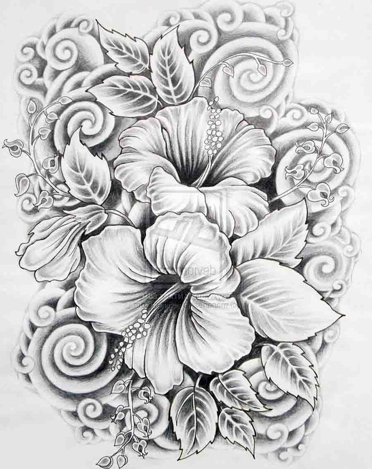 flower-shading-drawing-image.jpg (900×1133)