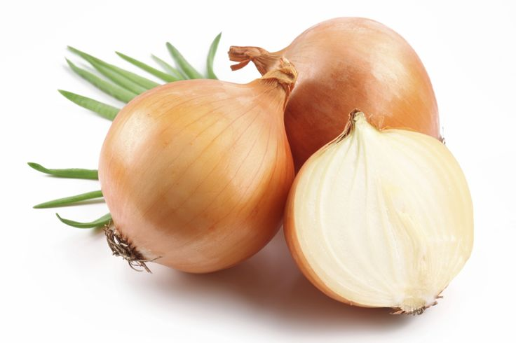 Cats and Japanese breeds of dogs (Akita, Shiba Inu, etc) are even more sensitive to the effects of garlic and onions. It can be toxic at 0.5% of your dog's body weight. It causes Heinz body formation (anemia). Learn how onions and dogs may not be a good combination, and that garlic may be bad for dogs and cats in large amounts. Call Pet Poison Helpline for poisoned pet.
