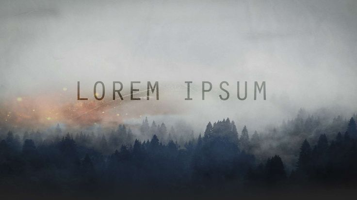 #desktop wallpaper #forest #it #latin #lorem ipsum #website