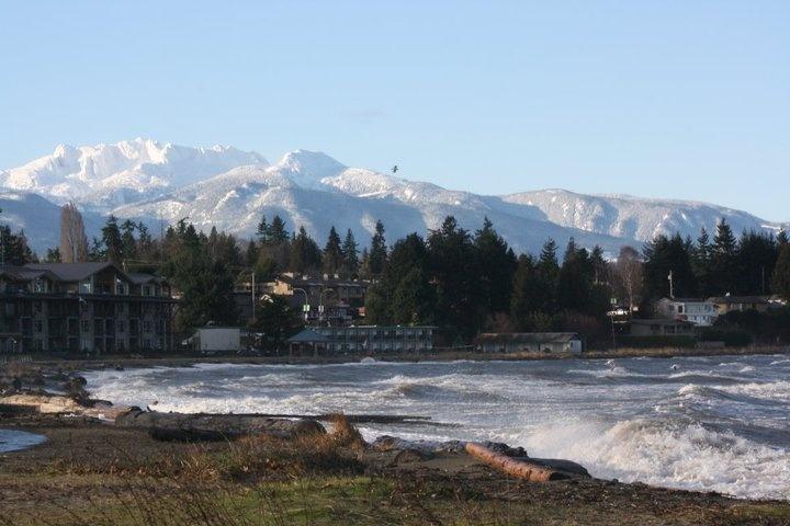 Image result for parksville winter