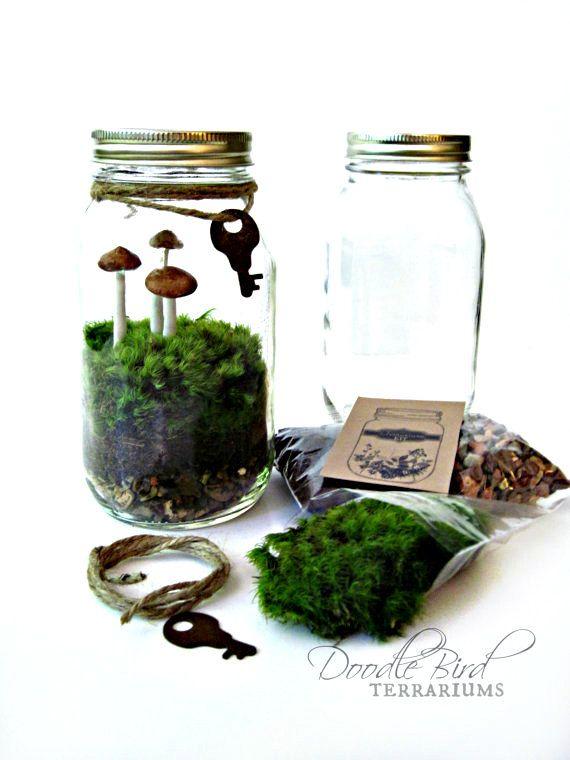 Terrarium Kit / Mason Jar Kit & Plants / Terrarium Gift Set / DIY Starter Kit / How to Build a Terrarium on Etsy,