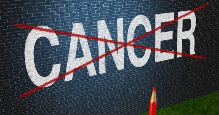Πρόκειται για τροφές που αποτελούν ασπίδα στην προστασία μας από τον καρκίνο και πρέπει να τις εντάξουμε στην διατροφή μας!