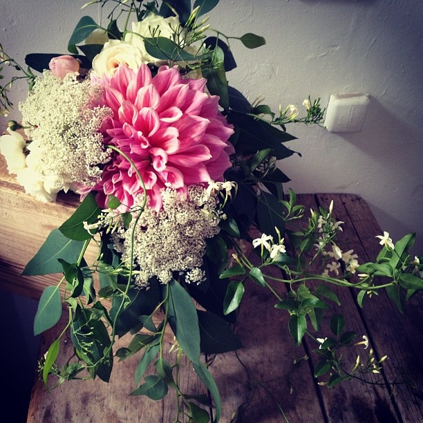 Myer - @poppies_flowers- #webstagram