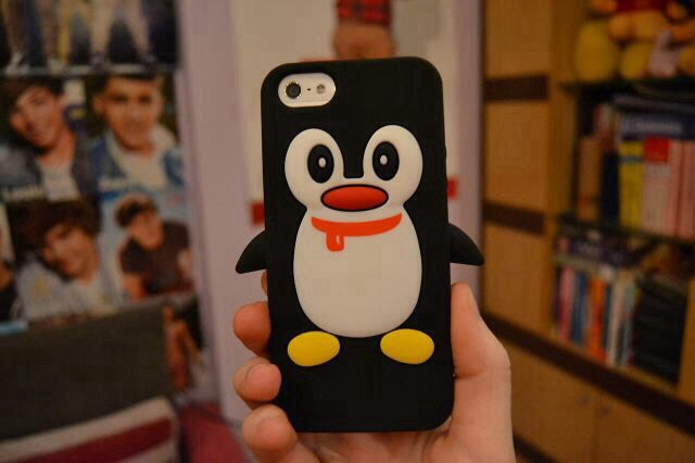 The phone case was cute.. but I liked the one direction poster in the backround! :)